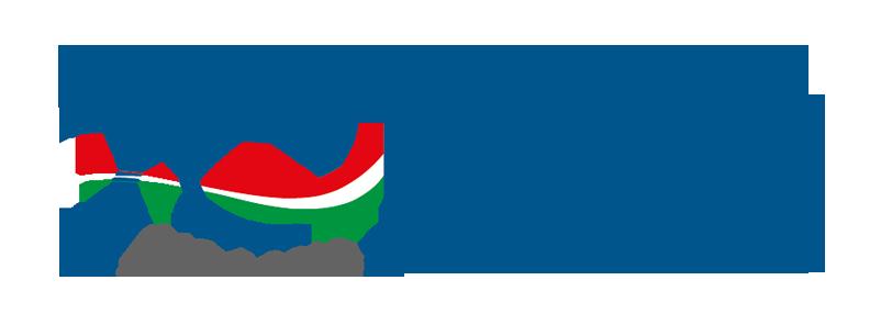 primastudio-logo-anniversario-fidia-farmaceutici